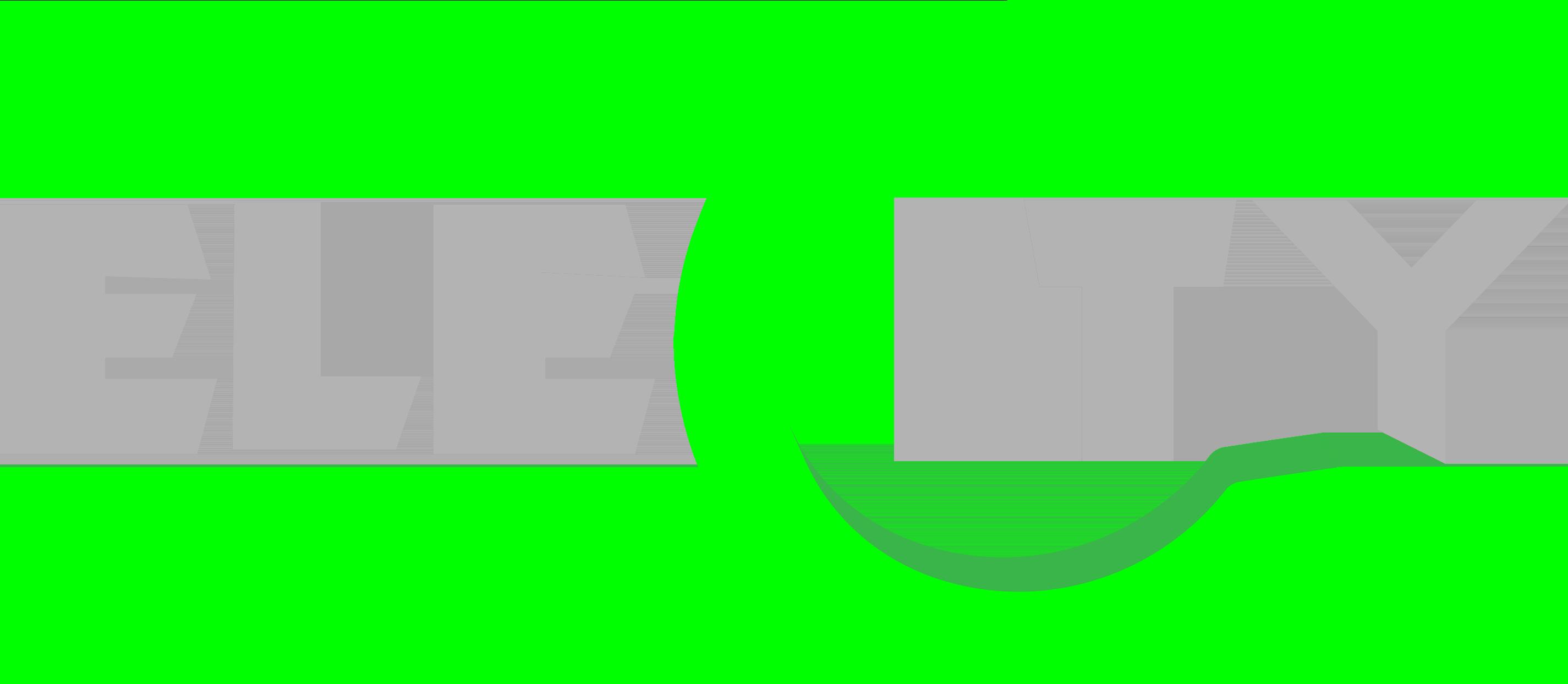 ELECITY